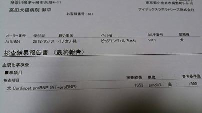 s-DSC_2285.jpg