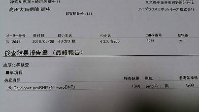 s-DSC_2286.jpg