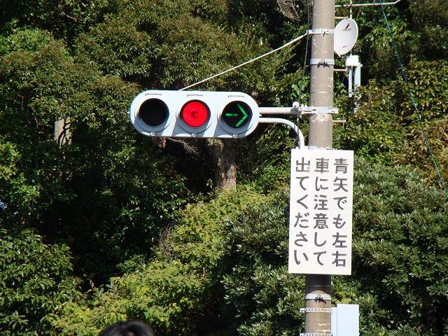 DSC09206.jpg