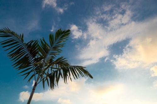 バリ島 乾季-1
