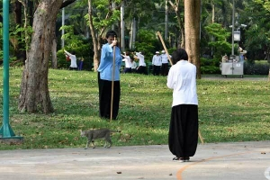 Cat and Tai-chi (Long Pole) Practitioners, Lumpini Park, Bangkok Thailand