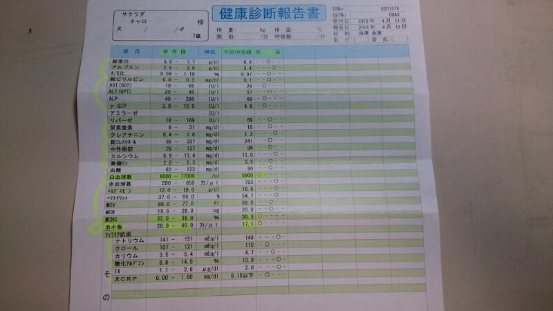 DSC_2643.jpg
