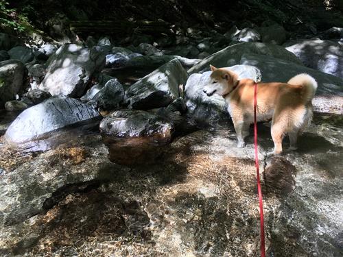 いざなみの滝12
