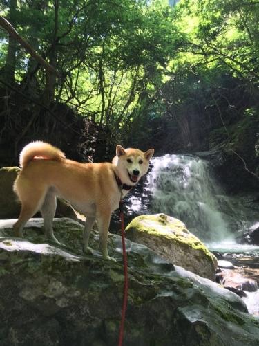 いざなみの滝14