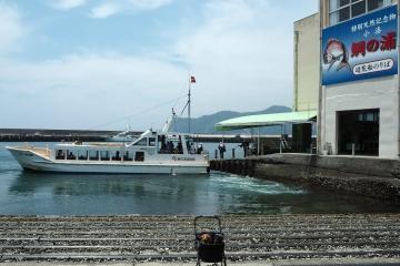 H30071605鯛の浦遊覧船