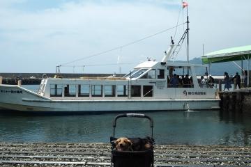 H30071606鯛の浦遊覧船