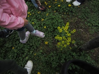 springjuice_02.jpg