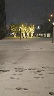 20180122雪景色(その3)