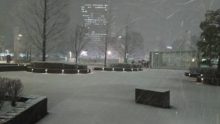 20180122雪景色(その4)
