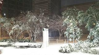 20180122雪景色(その7)