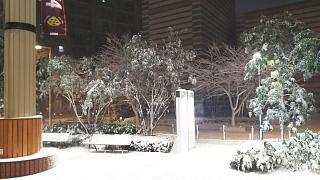 20180122雪景色(その9)