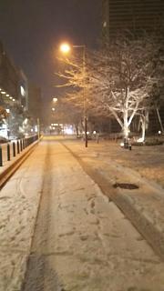 20180122雪景色(その12)
