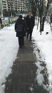 20180123降雪(その1)