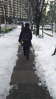 20180123降雪(その2)