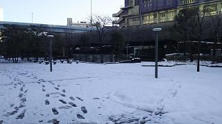 20180123降雪(その5)