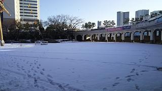20180123降雪(その7)