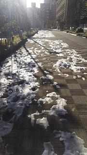 20180127残雪