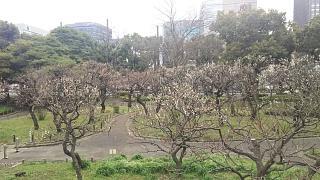 20180310三田~芝(その25)