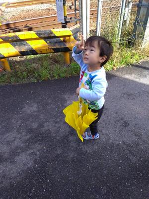 shion20180612-6.jpg