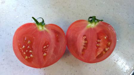 tomato20180703.jpg