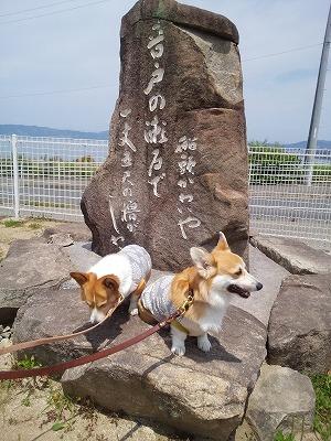 s-音戸大橋(6