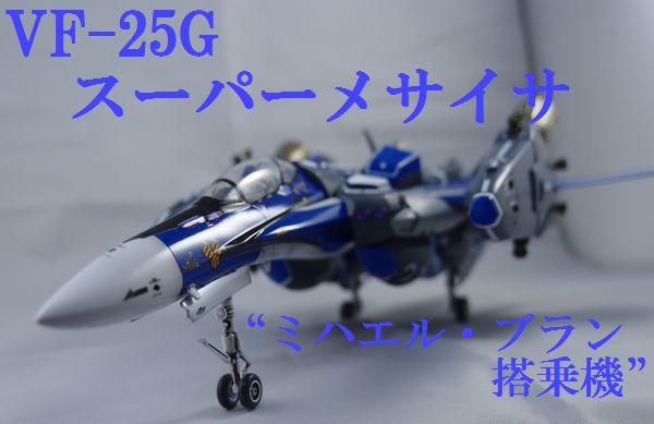 P4218781.jpg