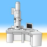 電子顕微鏡Wikimedia