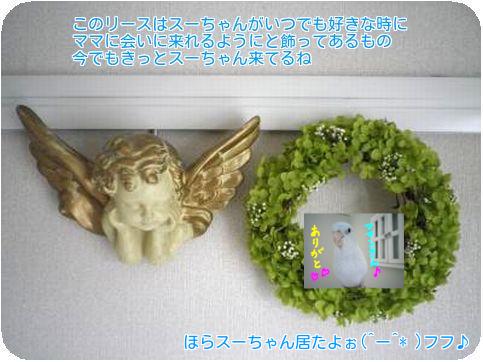 ④天使のリース