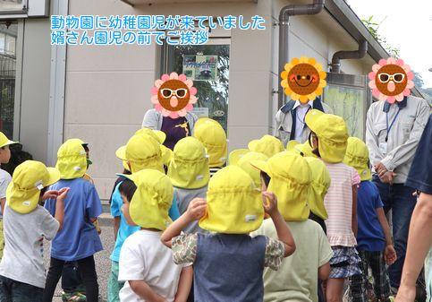 ⑦園児たち