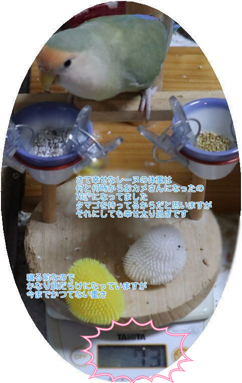 20180707090144810.png