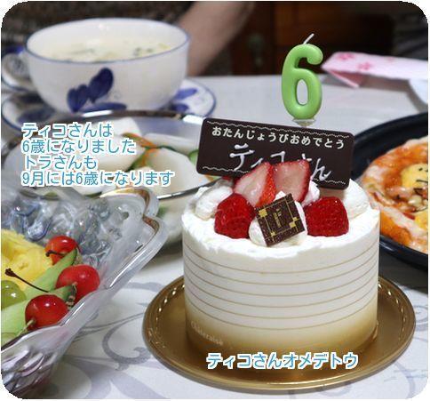 ④ティコさんケーキ