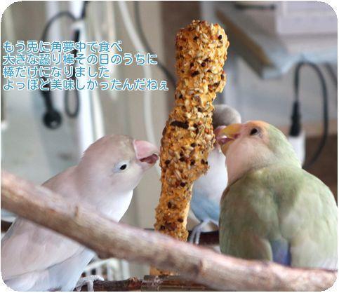 ④夢中で食べる