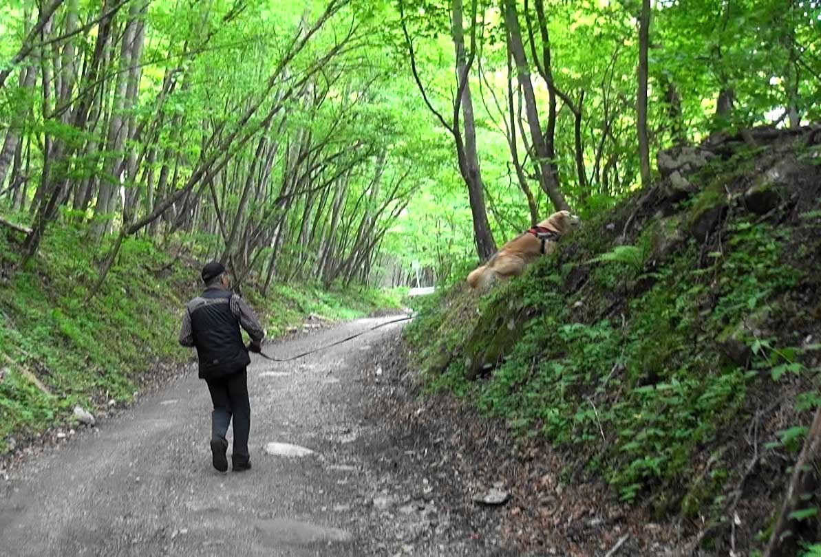 小武川周辺でトレーリング(7)