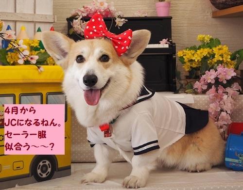 10中学生芹ちゃん