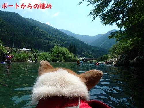 ボートからの眺め