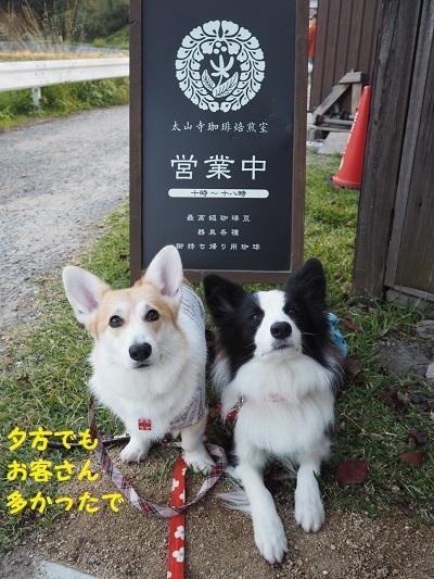 19太山寺珈琲 看板