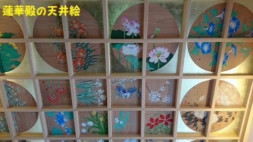 24天井絵