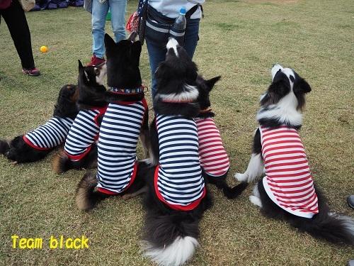 21黒いコたち