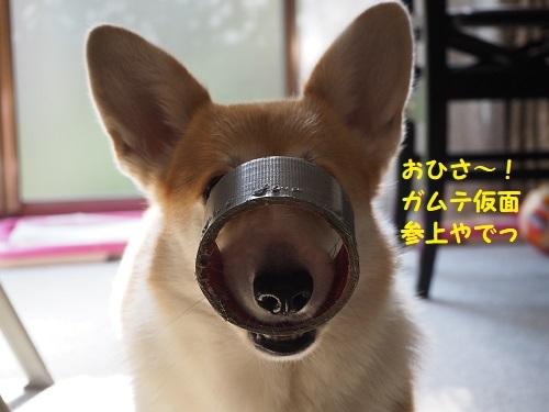 35ガムテ仮面