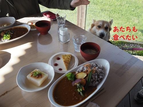 10食べたい