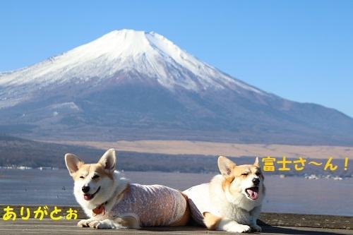 34富士山ありがと