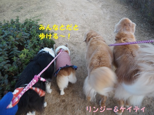 8歩ける~