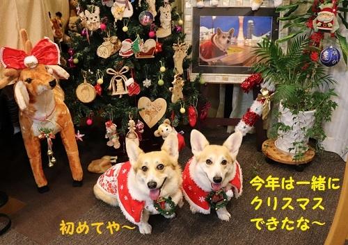 6一緒にクリスマス