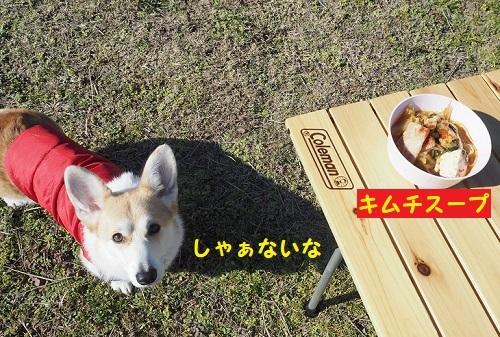 24スープと芹ちゃん