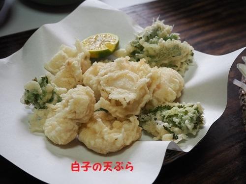 16天ぷら