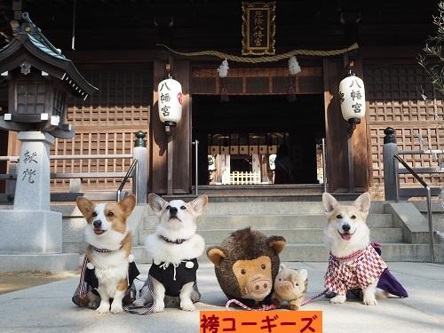 10袴コギズ