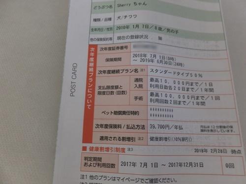 DSCF0395-23.jpg