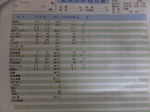 DSCF1060-56.jpg
