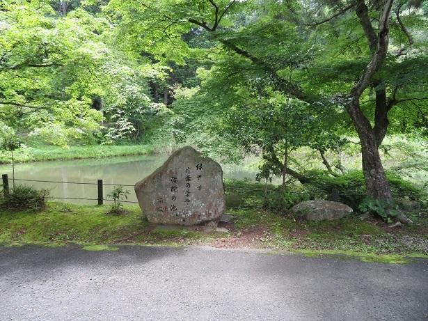 医王寺 弥陀の池