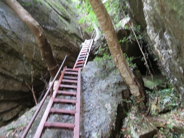 乳岩鉄梯子